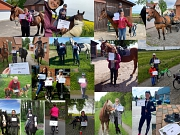 Vereinsmitglieder Kilometer Challenge 2021