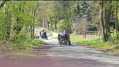 Kutschen auf der Strecke©Reit- und Fahrverein Bötenberg-Wietzen